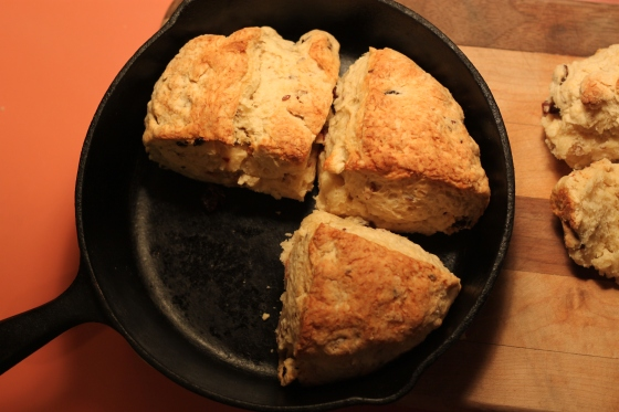 Golden Brown Scones